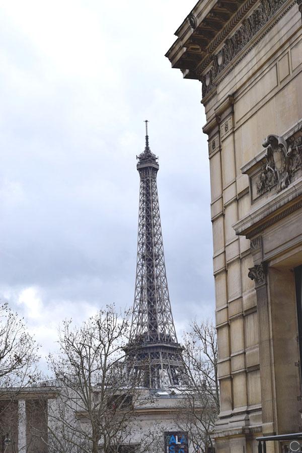 Palais Galiera 4.jpg
