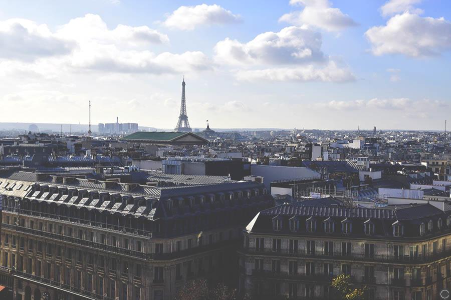 Promenade a Paris - toit Galeries Lafayette (2)