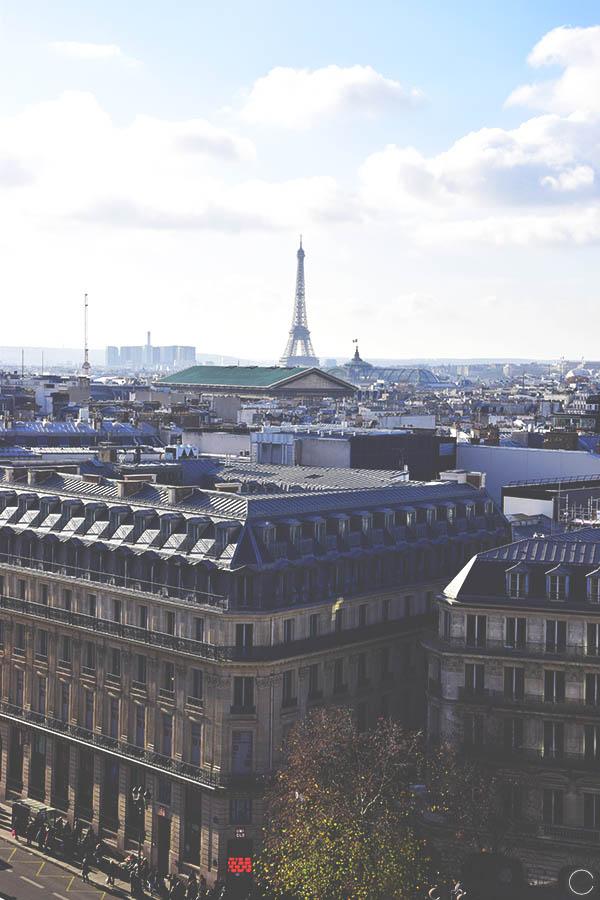 Promenade a Paris - toit Galeries Lafayette (3)