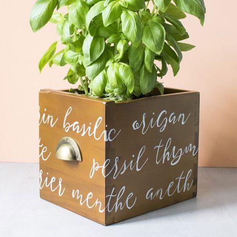 DIY upcycling : un tiroir transformé en cache pot pour herbes aromatiques